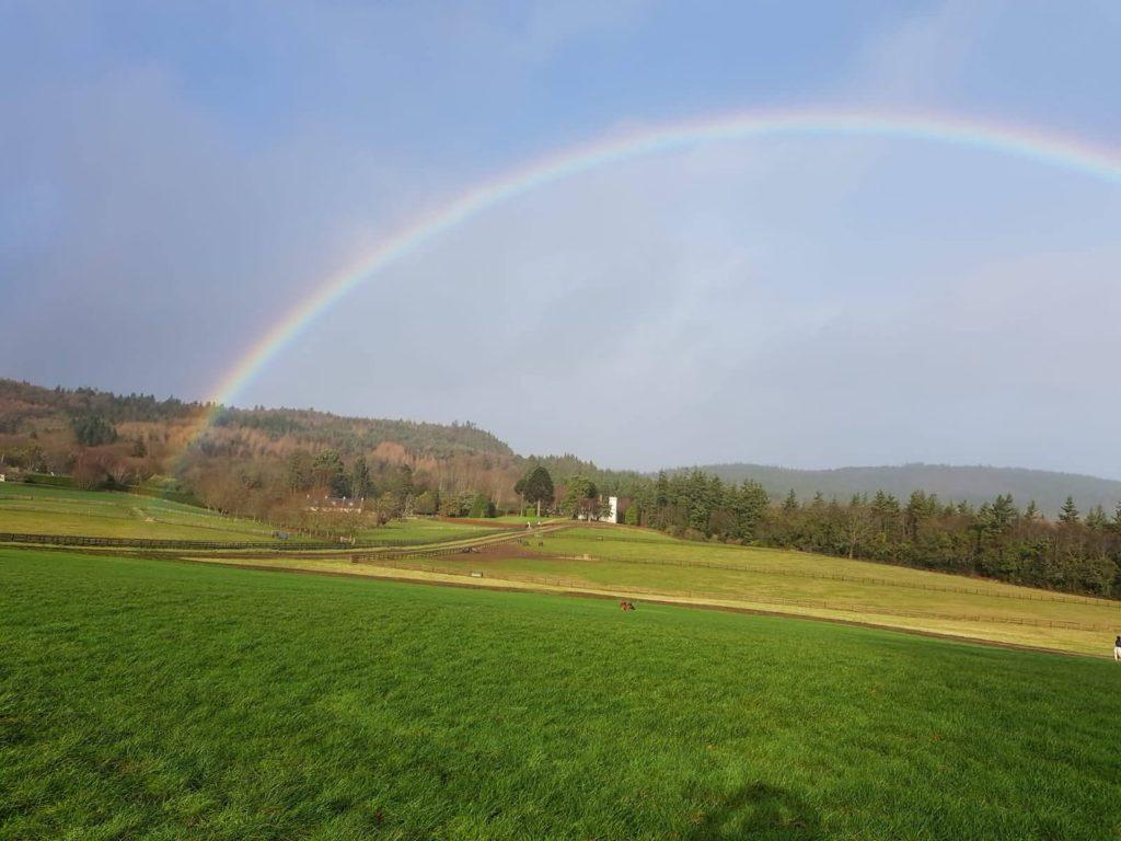 Devil's Glen Rainbow